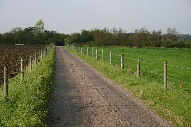 The lane up to Grange Farm