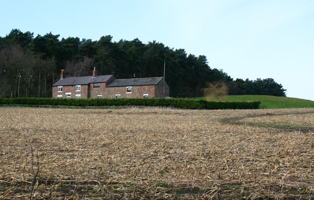 Chiflik Farm, near Gallantry Bank