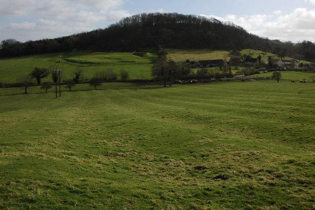 Dixton and Dixton Hill