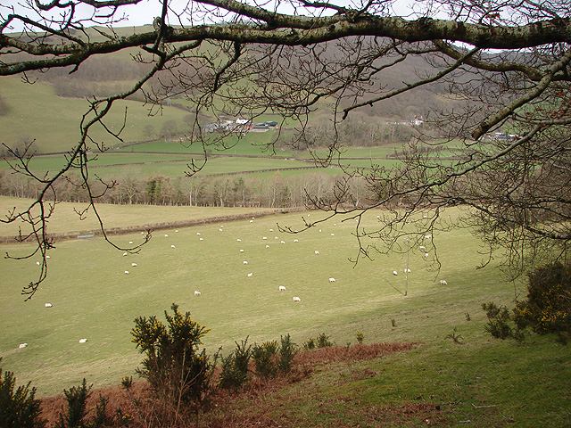 Farmland to the west of Aberffrwd