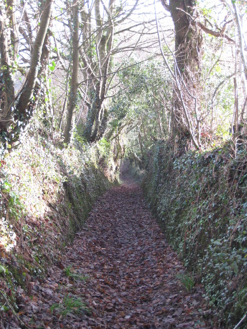 Ancient trackway leading from Bareppa to Maenporth