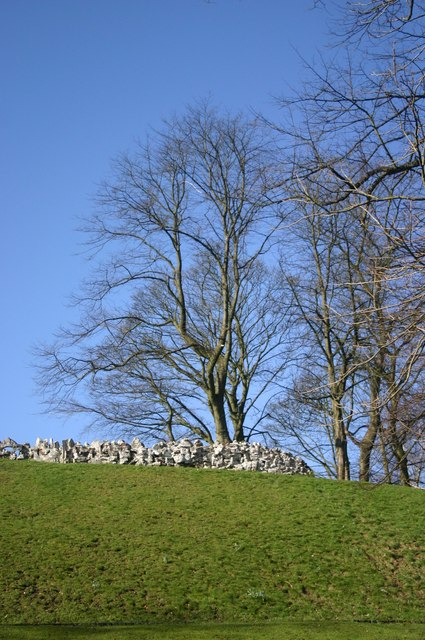 A wall and several trees