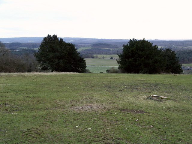 The view south westwards from Newlands Corner