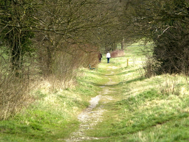 Walkers on Merrow Down