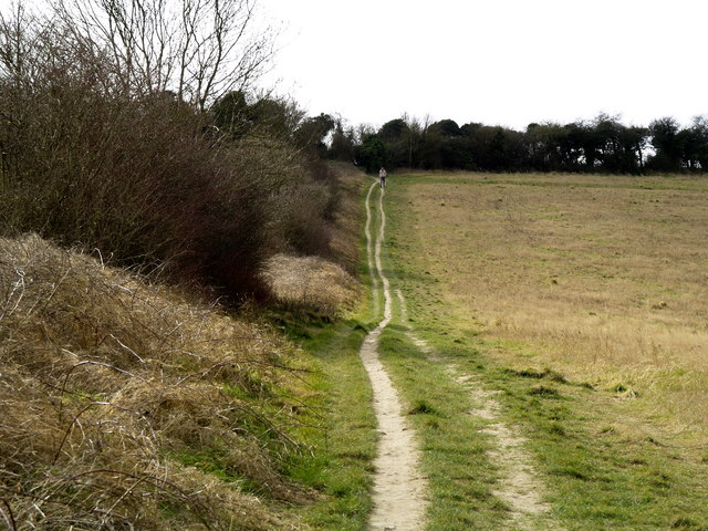 The footpath to Pewley Down