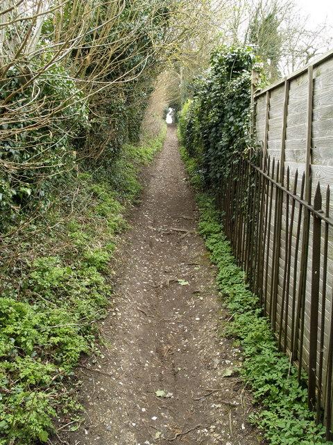 Footpath to Pewley Down