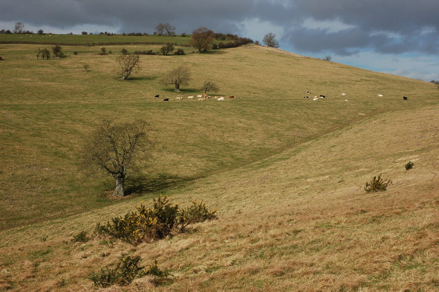 Woolstone Hill