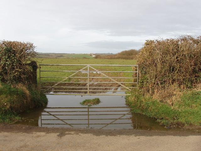 Gate and field opposite Delabole Farm