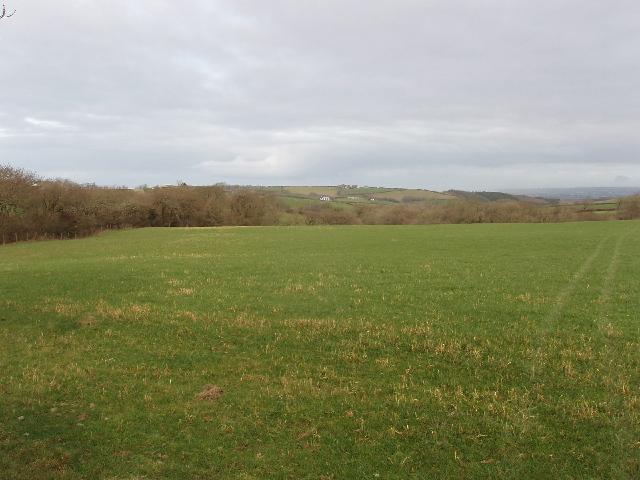 Fields by Exeworthy farm