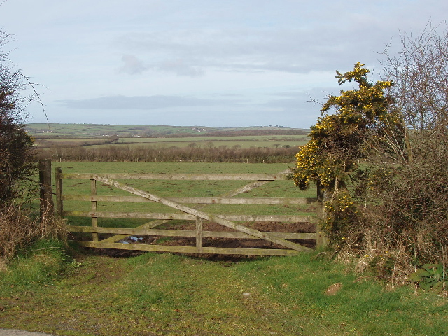 Gate and fields south of Exeworthy