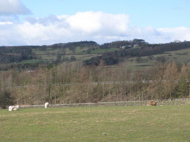 Pastures northwest of Milkwell Lane