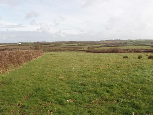 Fields by Copper Farm