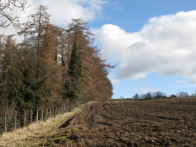 Arable land and woods near Cor Burn