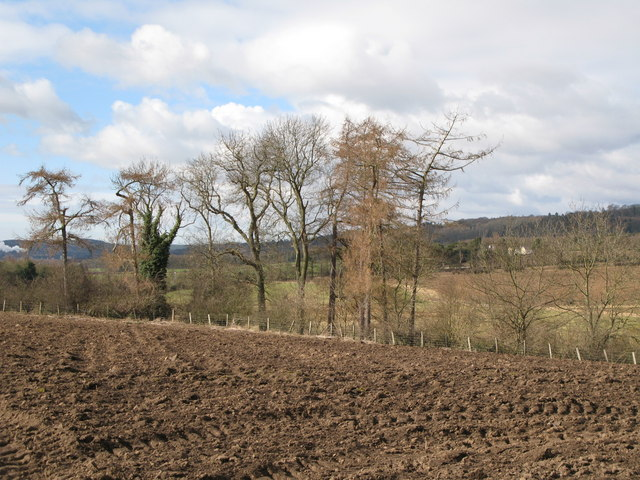 Arable land and woods near Cor Burn (2)
