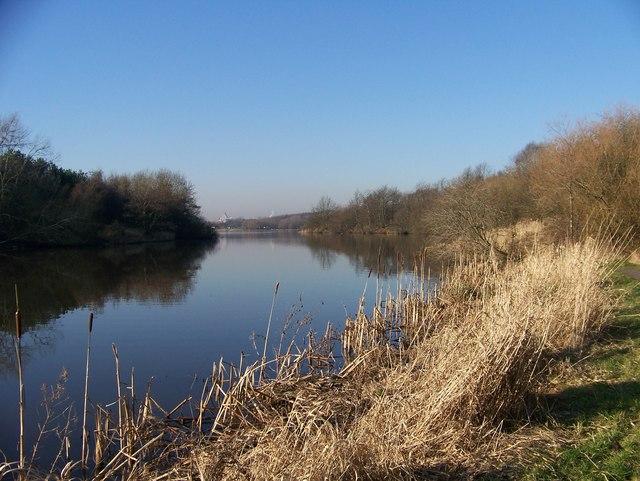 A quiet stretch of Strathclyde Loch