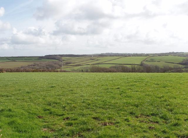 Fields by Trefrida