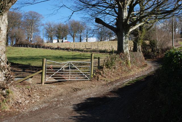 Track to Parc-yr-ynn farm