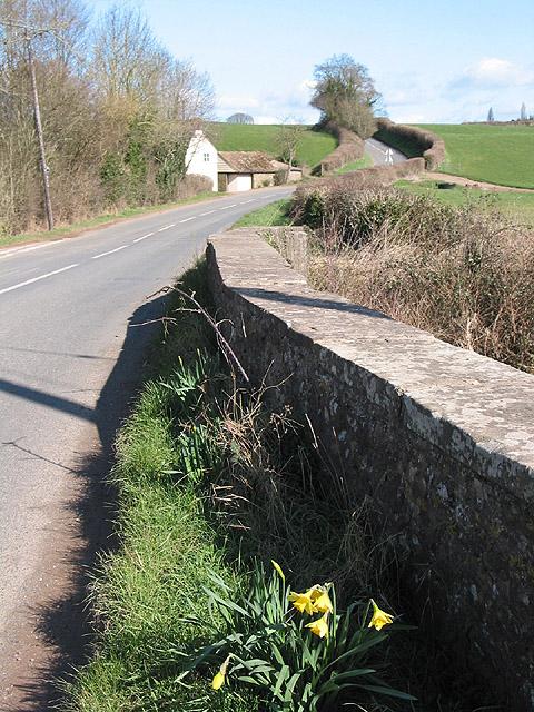Parapet of Tretire Bridge with wayside daffs