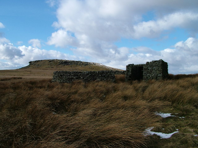Sheepfold and shelter south of Shacklesborough