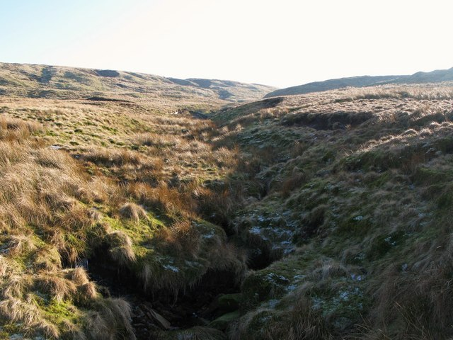 The cleugh of Long Sike (5)