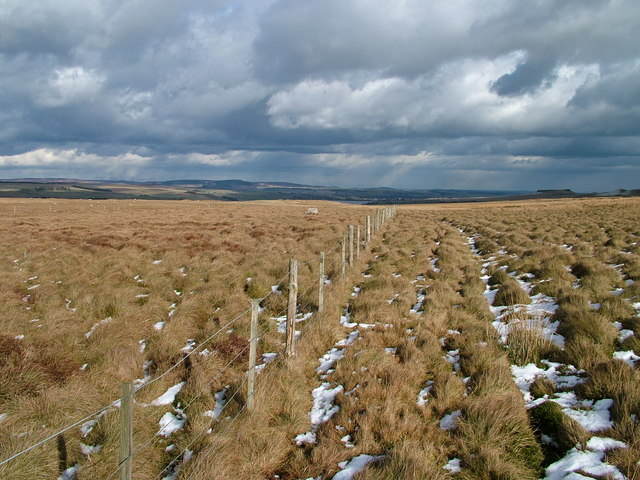 Fence on Galloway Rigg