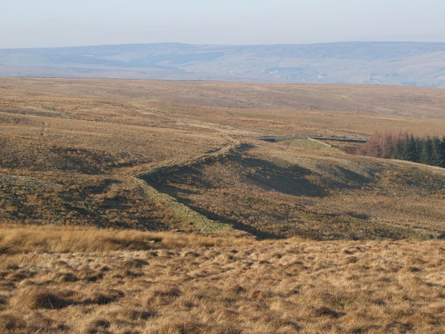 The cleugh of Long Sike and Harthope Moor (3)