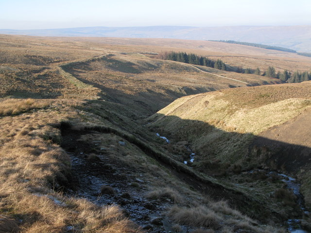 The cleugh of Long Sike (6)