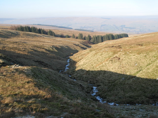 The cleugh of Long Sike (7)