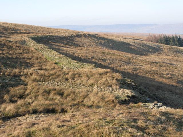 Track on Harthope Moor (3)