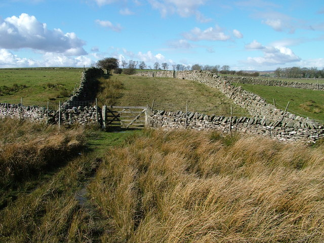 The end of the road to the Rigg