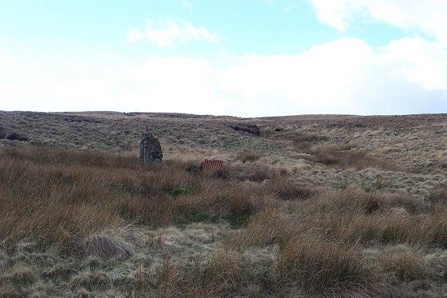 Moorland Streams from Slippery Moss