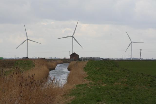 Drain and windmills