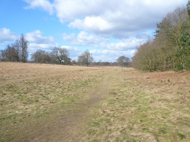 Clumber Park - Footpath View