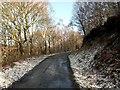 SK2998 : Trans Pennine Trail to Finkle Street Lane by John Fielding