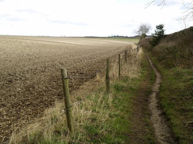 The Wolds Way near Bottom Plantation