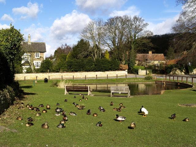 Brantingham Village Pond