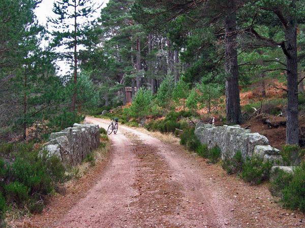 Bridge over the Burn of Glendui, Glen Tanar, near the Half Way Hut