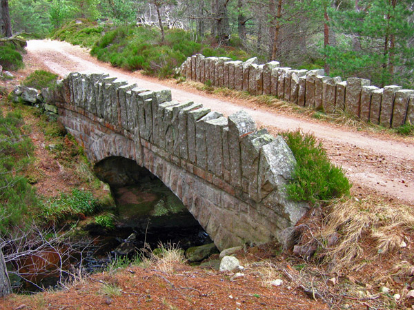 Bridge over the Burn of Glendui, Glen Tanar