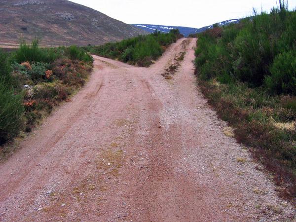 Fork in the track up Glen Tanar