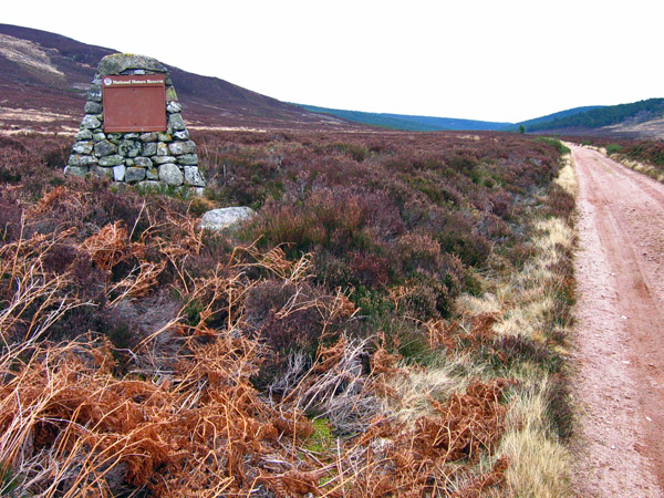 Cairn marking National Nature Reserve, Glen Tanar