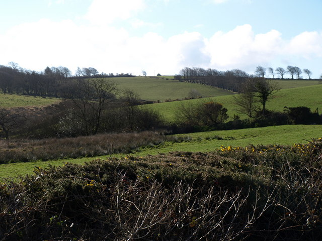 Valley beside Badgall Downs