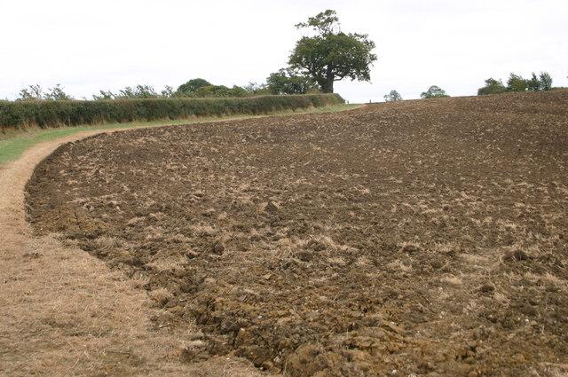 Ploughed field above Kitehill farm