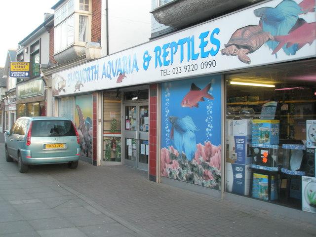 Pet shop at Drayton (not Emsworth)