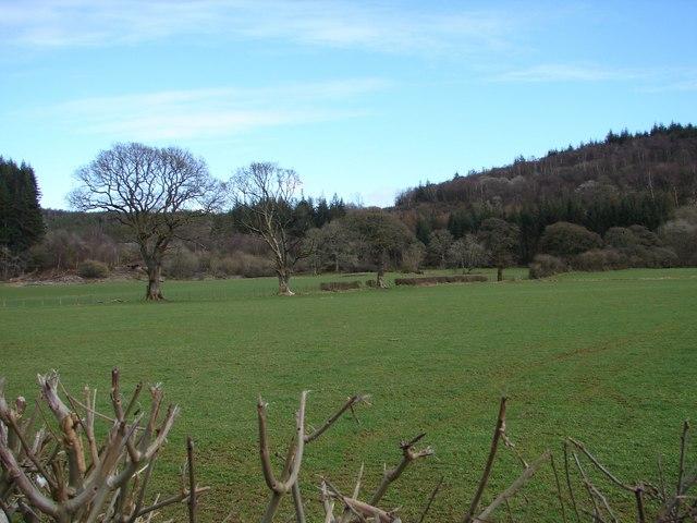 Blackbellie Hill
