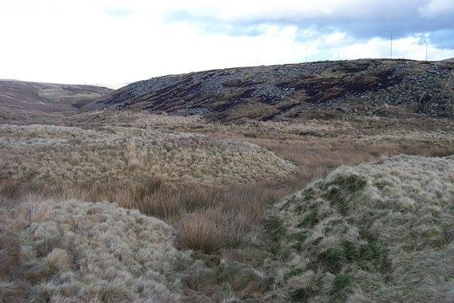 Stream Gully below Catchment Cut-off, Slippery Moss