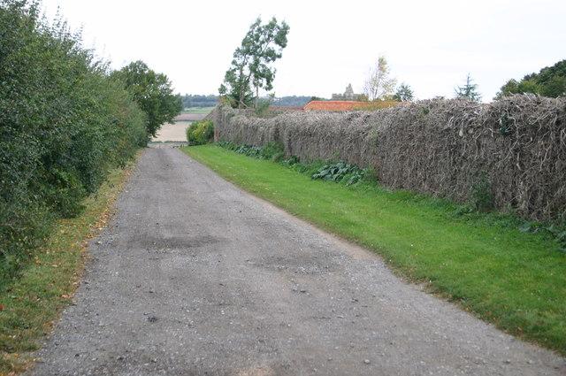 Lane to Church