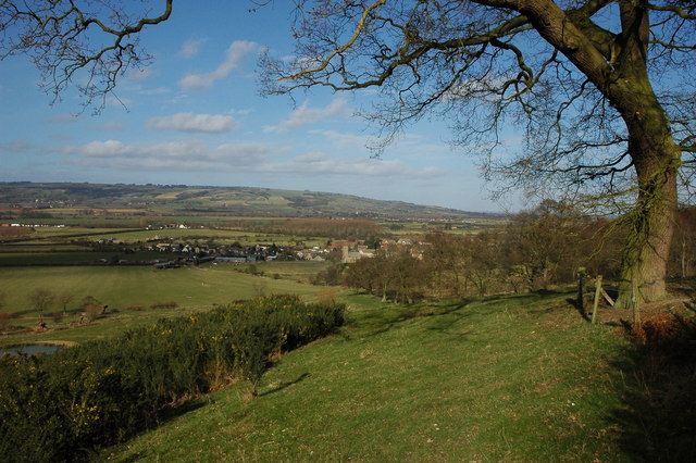 Teddington viewed from near the Belt