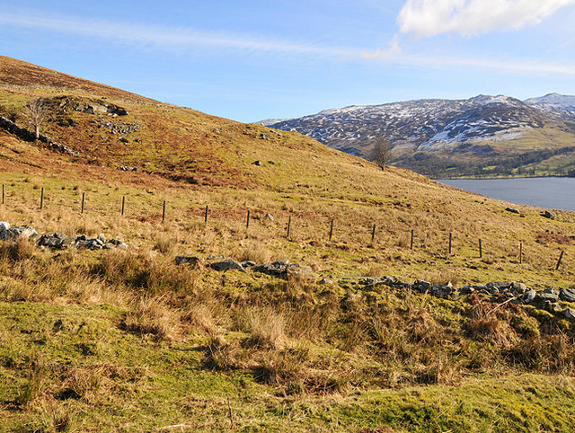 Rough Pasture and old drystane dykes in lower Glen Beich