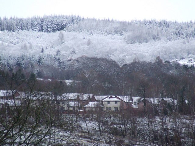 Swallow Brae and Leapmoor Forest