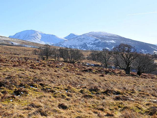 Rough pasture in Glen Beich looking south